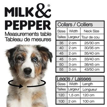 Laisse Boreal Taupe (Milk & Pepper)