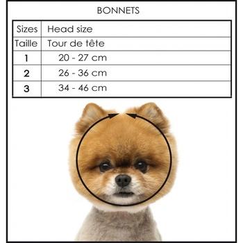 Bonnet NOA *