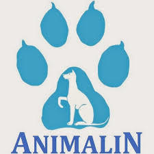 Harnais Animalin®  TRENDY Vert Olive