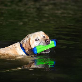 Chuckit Amphibious Bumper