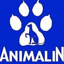 Harnais Animalin