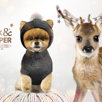 Vêtements Milk & Pepper Collection d'hiver 2015 / 2016